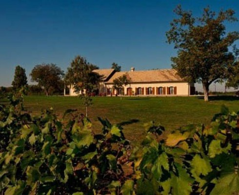 Vupik d.d. is part of Agrokor since January 2010 and since then significant investments have been made. The first completed investment in Vupik is Goldschmidt Vineyard House.
